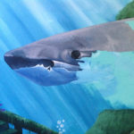 shark painting mural