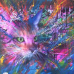 cat colourful canvas
