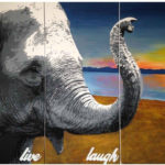 elephant canvas collection