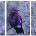 bird canvas collection
