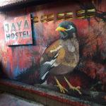 jaya hostel bird mural