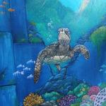 underwater turtle mural