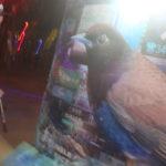 christopher thomas live bird painting